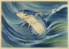 Striped Bass  by Chiura Obata, 1930  (published by Takamizawa)