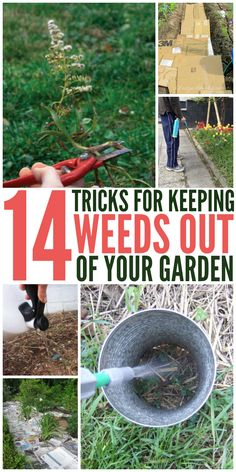 Gardening Tips 14 Tricks to Keeping Weeds Out of Your Garden - One Crazy House - Looking for tips get rid of weeds? These will help! Here are 14 tricks to keep weeds out of your garden - and to stop them before they start.