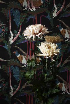 pheasants and rhubarb wallpaper by klaus haapaniemi #darkflorals