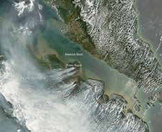 NASA Satellite Image of Palm Oil Fires Raging In Sumatra- February 28, 2014: In 2014 the Governor of Riau declared a state of emergency as fires set to clear land for palm oil sent pollution levels soaring. 22,000 people suffered respiratory illnesses and schools were closed to protect children from exposure. The annual fires impact all of Southeast Asia. A new report finds that each year around 110,000 deaths are associated with exposure to particulate matter from palm oil fires.