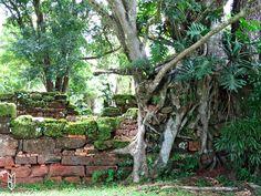missions jésuites d'Amérique du Sud www.mamaisonsurledos.com