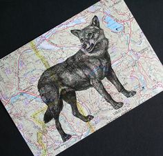 Walk on the wild side ~ Wolf Print map of Montana, by CrowBiz > click through for more wildlife and vintage map prints