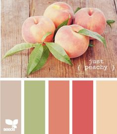 Just peachy color scheme. Rosy pink red, peachy salmon, rich cream, apple green and mocha tan. Fun palette for living room/dining room/ kitchen, or a girls bedroom! Colour Pallette, Color Palate, Colour Schemes, Color Combinations, Paint Schemes, Green Color Palettes, Beach Color Schemes, Spring Color Palette, Color Tones