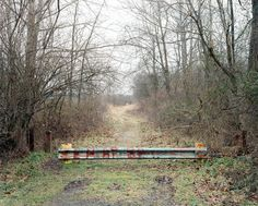 Path S7 (Entrance), Point Pleasant, West Virginia, 2012, by Joshua Dudley Greer