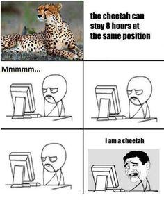I am a Cheetah