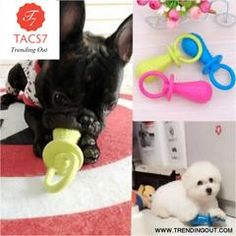 Puppy Pet Toys for Small Dogs Rubber Resistance To Bite Dog Toy Teeth Cleaning Chew Training Toothbrush Toys Pet Supplies Color Random Diy Chew Toys For Dogs, Diy Dog Toys, Pet Toys, Toy Puppies, Dogs And Puppies, Doggies, Dog Teeth, Dog Costumes, Outdoor Dog