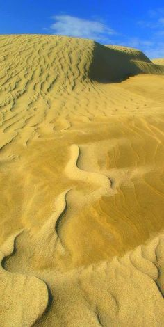 Wonderful sand patterns atop the other-worldly Te Paki dunes, NZ New Zealand Adventure, New Zealand Travel, New Zealand North, Bay Of Islands, Oasis, Life Is A Journey, The Beautiful Country, South Island, Beautiful Islands