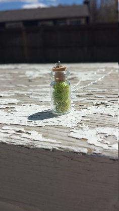 Check out this item in my Etsy shop https://www.etsy.com/listing/291214913/tiny-terrarium-necklace