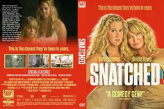Snatched (2017) DVD Custom Cover