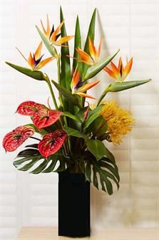 Floral- Birds with Anthuriums