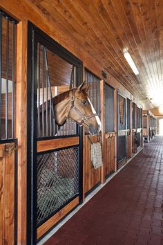 I love the rich look of the aisle in this Wellington horse barn. Warm wood tones, bold Lucas Equine stall door. Happy horses!