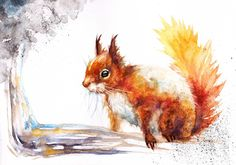 Original Watercolour Painting by Be Coventry,Realism, Red Squirrel in Art…