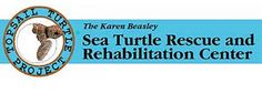 Turtle Hospital in Topsail Island, NC
