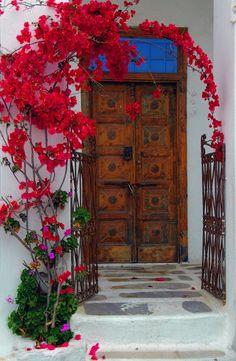 Bougainvillea and old door
