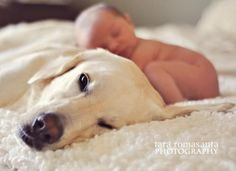 Baby with the dog - I'm so doing this!