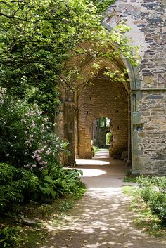 abbaye de Beauport by rasquelfr on Flickr.