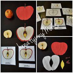 kreatywnyMaks: Czerwone jabłuszko
