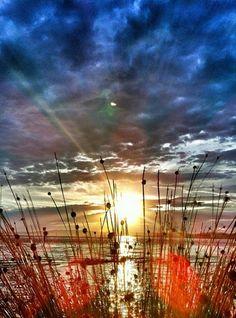 Newhaven Sunrise
