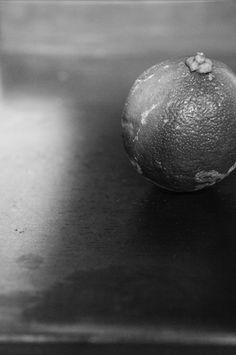 Lemon Lemon, Fruit, The Fruit