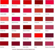 Longest List Of Diffe Shades Red Color All Are Presented With Names And Hex