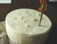 Easy Recipe: Unique Blue Cheese Ball - News - Bubblews Making Cheese At Home, How To Make Cheese, Food To Make, Milk And Cheese, Blue Cheese, Cheese Cave, Cooking Cheese, Kombucha, Tapas
