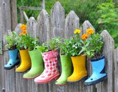 Using old rubber boots for plants. Besure to put drain hole in bottom