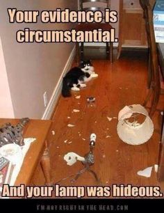your evidence is circumstantial and your lamp was hideous