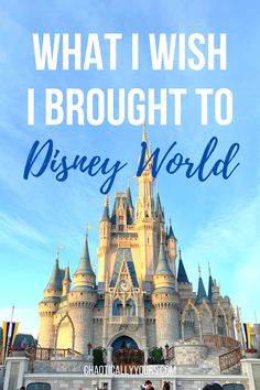 What I Wish I Brought To Disney World