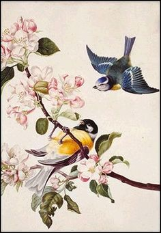 Ansichtkaart koolmeesjes op bloesem. Romantische afbeelding op een ansichtkaart, van een schilderij gemaakt door de Nederlandse schilder Herman Henstenburgh