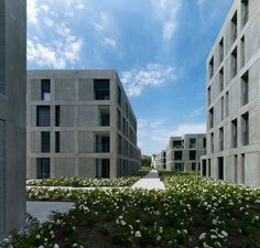2008-2012 Complesso residenziale con centro commerciale Rosengarten Arbon (Svizzera) © Fotografo: Stefan Müller