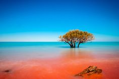 It's a kaleidoscope of colours. | 19 Incredible Reasons You Should Visit Broome As Soon As Possible