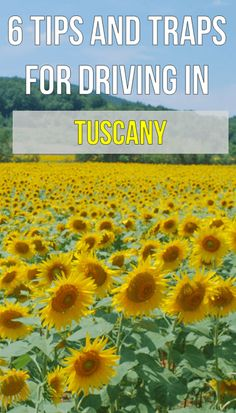 Discount Airfares Through The USA To Germany - Cost-effective Travel World Wide Planning Your Vacation To Italy? Look at These Driving Tips To Get Around In Tuscany. It is difficult. Utilize These Tips To Ensure You Have A Great Time If Renting A Car Italy Vacation, Italy Travel, Italy Trip, Cinque Terre, Naples, Driving In Italy, Milan, Travel Photos, Travel Tips