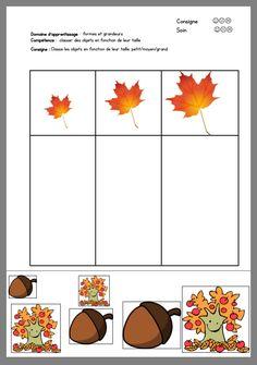 Fall Preschool Activities, Kindergarten Math Worksheets, Toddler Learning Activities, Homeschool Kindergarten, Montessori Activities, Preschool Math, Tree Study, Toddler School, Fall Crafts