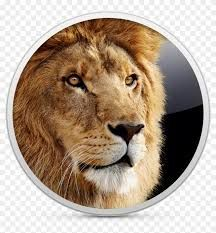 Download Mac OS X Lion 10.7.2 DMG Mac Free Mac Download, Modern Tools, Intel Processors, Hard Disk Drive, Color Effect, Mac Os, Snow Leopard, Lion, Apps