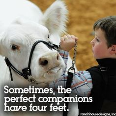 Sometimes the perfect companions have 4 feet :)
