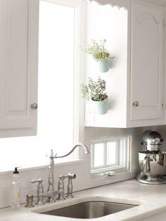 Herb Garden In Kitchen, Kitchen Herbs, New Kitchen, Herbs Garden, Kitchen Ideas, Wall Herb Garden Indoor, Plum Garden, Kitchen Updates, Kitchen Designs
