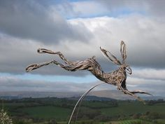 Leaping Hare by Penny Hardy. Large leaping hare on stainless steel stilts to sway and move with the breeze  Original Aluminium wire, epoxy resin, stainless steel 190cm x 200cm x 50cm Sold Large leaping hare, dynamic animal sculpture, mystical hare
