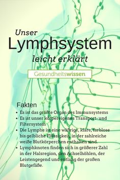 When talking about a vascular system, most people first think . - When talking about a vascular system, most people first think of the bloodstream; the lymphatic syst - K Om, Medical Pictures, Lymphatic System, Nurse Life, Physiology, Wellness Tips, Workout, Human Body, Body Care