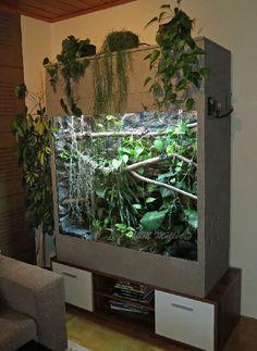 Terrarium Diy, Terrarium Stand, Terrarium Reptile, Aquarium Terrarium, Reptile House, Reptile Habitat, Reptile Room, Reptile Cage, Chameleon Enclosure