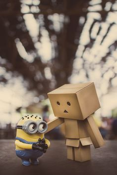 Danbo and Minion