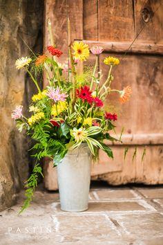Gerbera, Planter Pots, Plants