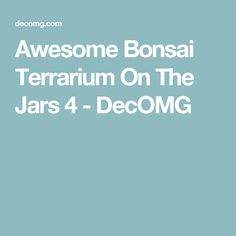 Awesome Bonsai Terrarium On The Jars 4 - DecOMG