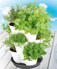 A Strawberry Planter is also great to grow your own herbs in!