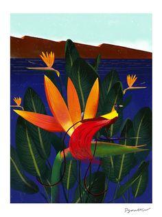 Decue Wu - Bird of Paradise - Print Creative Illustration, Portrait Illustration, Grey Art, Flower Bird, Book Projects, Design Projects, Sign Printing, Exotic Flowers, Art World