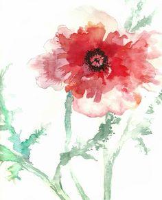Poppy Watercolor - Maria Hegedus
