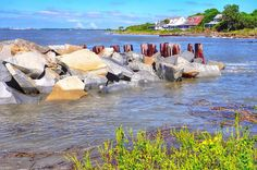 Rocks Near Fort Moultrie Sullivans Island, Charleston, Places To See, Beautiful Places, World, Beach, Islands, Rocks, Travel