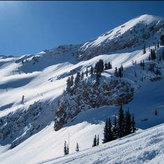 Alta, Utah.  Awesome skiing!