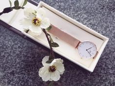 Daniel Wellington Classic Petite, Watches, Accessories, Women, Women's, Clocks, Clock