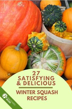 Most pumpkins and gourds sold in the US are for decoration, with sales peaking around Thanksgiving. But increasingly, organic and small farms are reintroducing squash varieties to the masses, which means we need to know how to prepare them. The good news: We have 27 adaptable winter squash recipes for every palate, including vegan, vegetarian, gluten-free, sweet, savory, and even a little something for the life-long squash resistant. Find them here in our roundup. Acorn Squash Recipes, Pumpkin Squash, Butternut Squash Soup, Gourds, Pumpkins, Garden Vegetable Recipes, Buttercup Squash, Easy Casserole Dishes, Vegan Pumpkin Soup