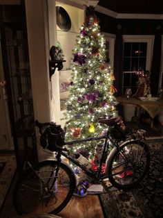 Jim Serger  : Bicycle shop---Small Business Saturday